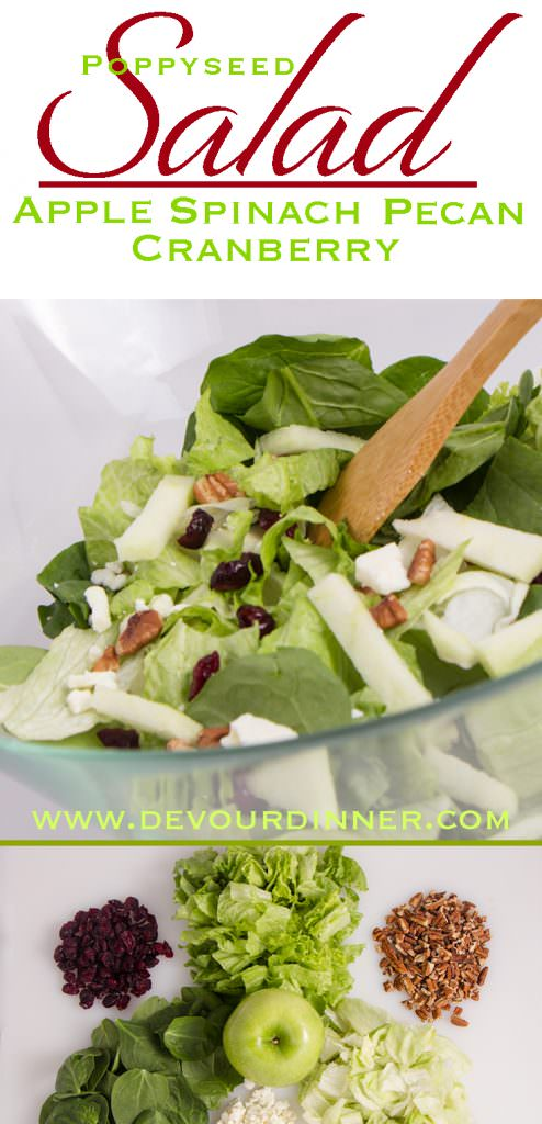 Fall Apple Cranberry Salad