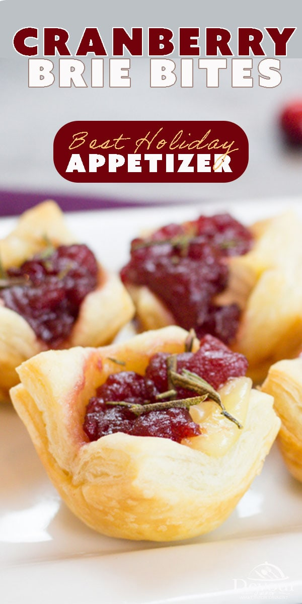 There's a reason why this recipe is duplicated over and over, it's just that good! Cranberry Brie Bites are a quick and easy appetizer recipe that looks like you spent all day. It's mature flavors will waken your tastebuds and you will go back for more. But don't take my word for it. Make it and take it to your next party, don't go empty handed. #easyrecipe #easyappetizer #cranberry #cranberrybrie #recipes #recipe #food #Foodie #feedfeed #instagood #familyrecipe #recipeoftheday #holidayrecipe