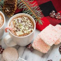 Easy and Fun Fancy Marshmallows with crushed candy canes and Andes Mints