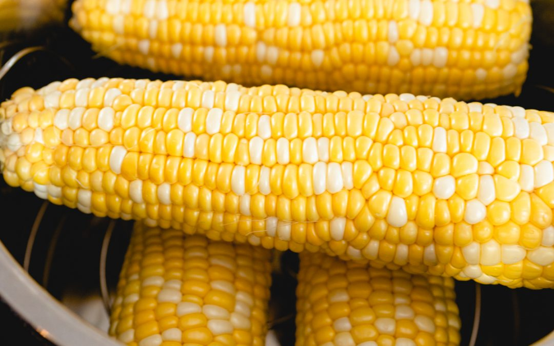Sweet and Buttery Instant Pot Corn on the Cob